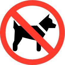 Keine Hunde auf dem Campingplatz